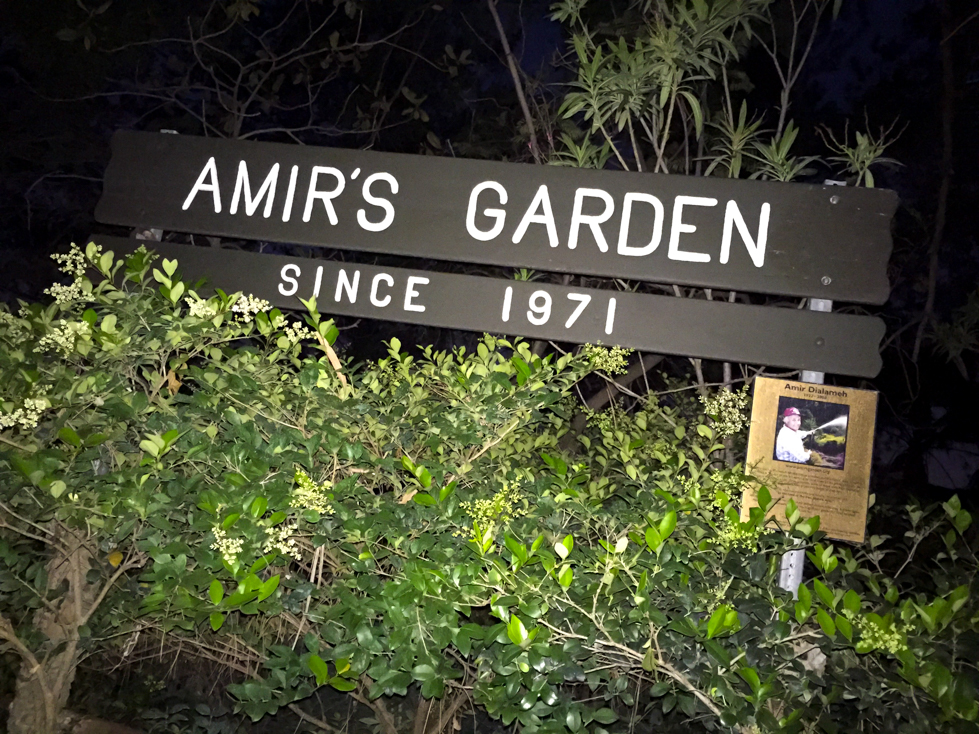 escape into a maze of plants trees at night - Amirs Garden